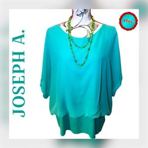 ➕🌻 Joseph A. Sheer Plus-Size Top
